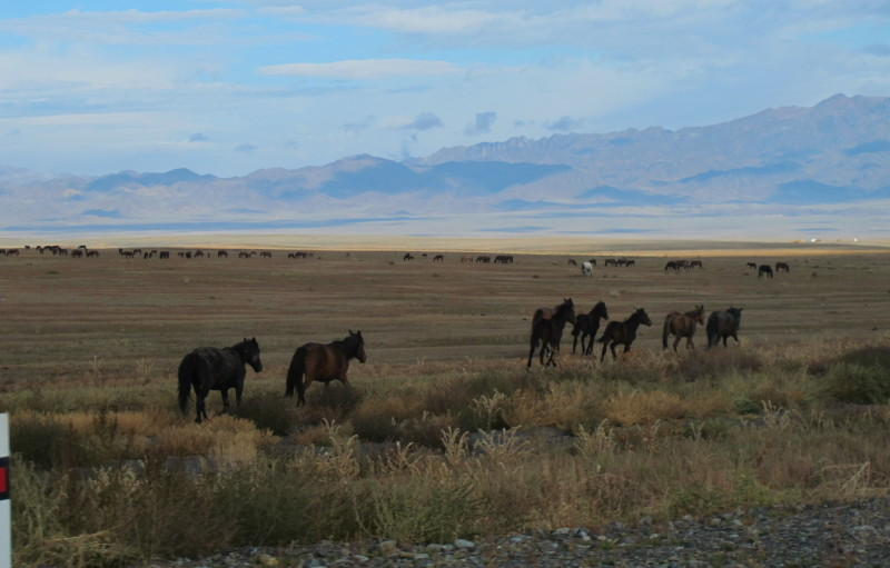 Kazachstan 2014
